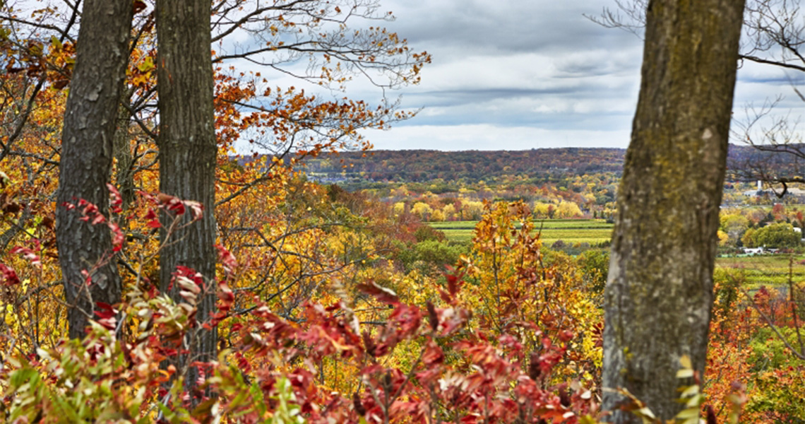 view over Fall colours to Lake Ontario