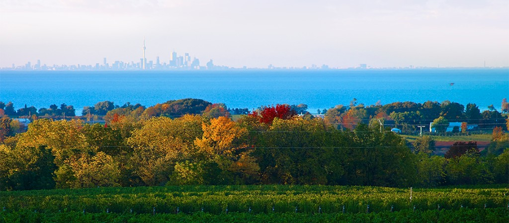 across Cave Spring Vineyards and Lake Ontario to Toronto's skyline