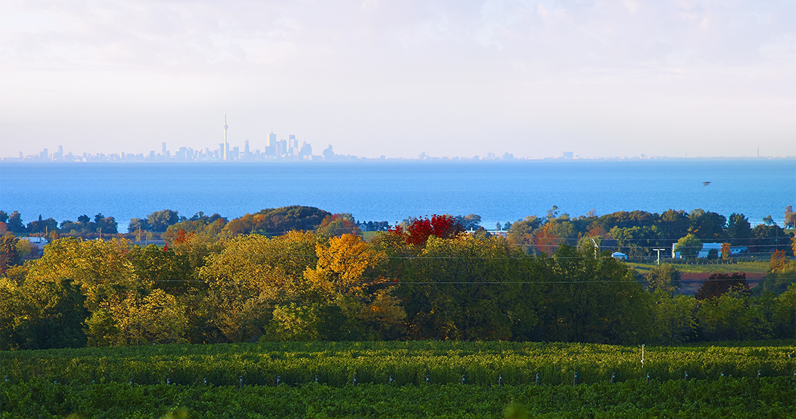 Looking out over Lake Ontario