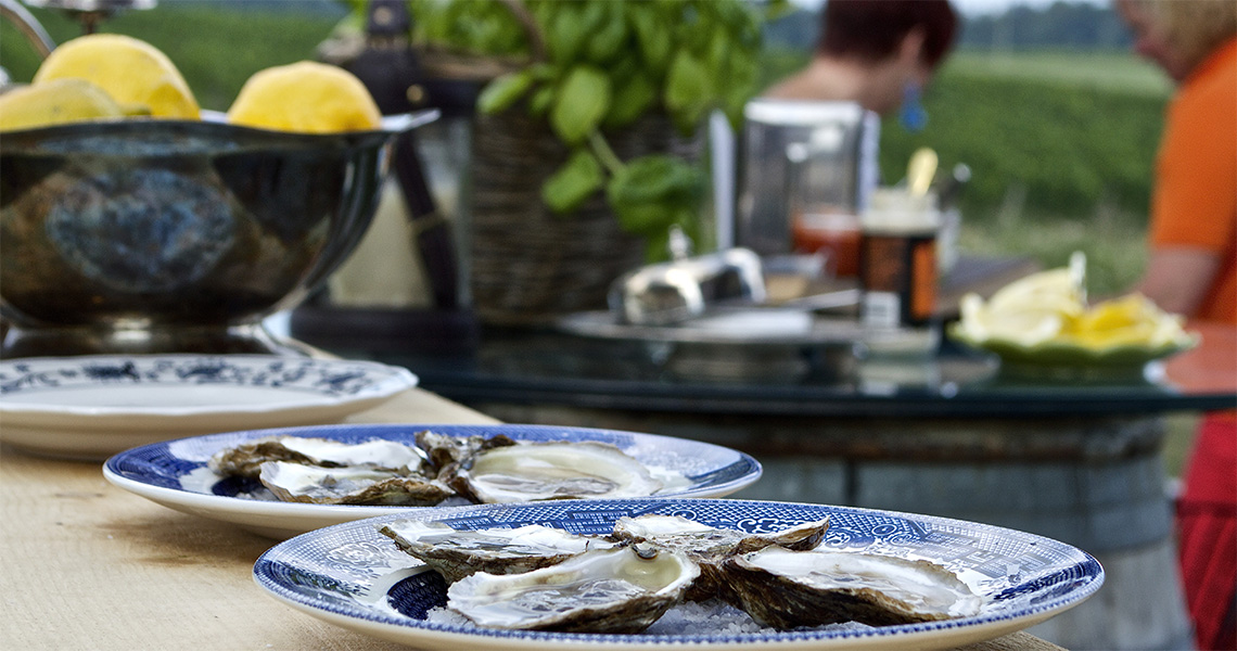 Oysters by Zooma Caters at Westcott Winery