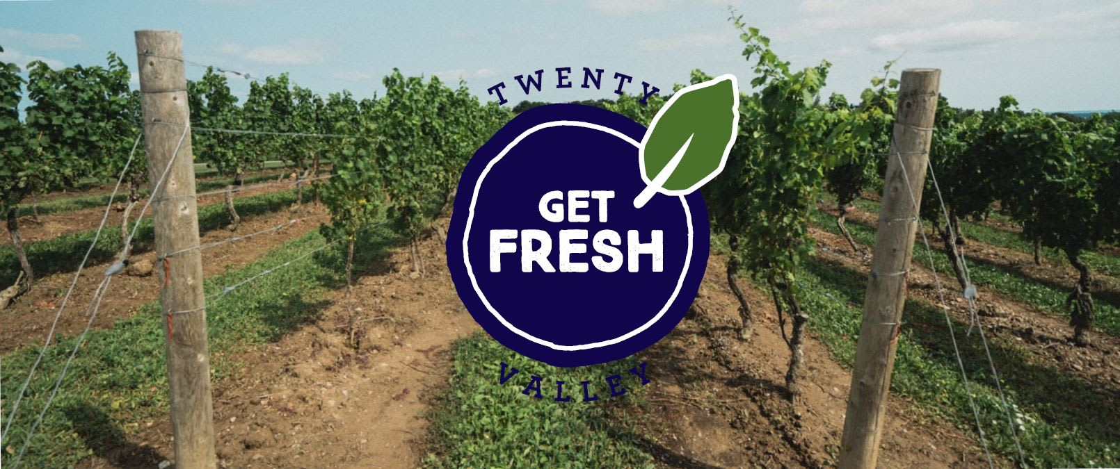 On the wine trail for Get Fresh in the Valley